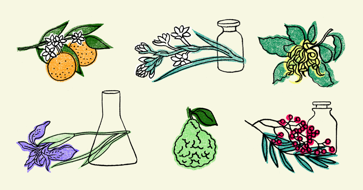 The many facets of natural perfumery: some useful definitions